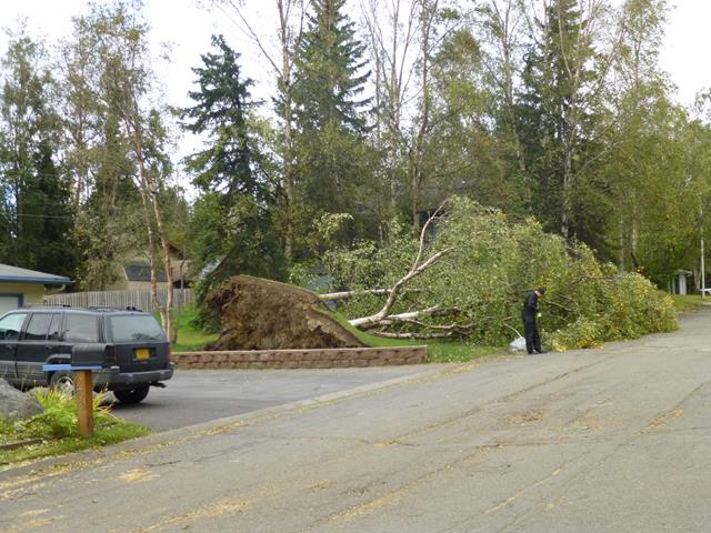 Storm and Wind Damage Restoration Services - Fire & Flood Services Inc - Anchorage, Alaska